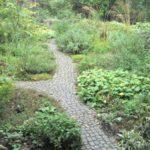 naturgarten naturnaher garten natursteinweg mit staudenpflanzungen