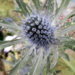 Kunst-Floristik-Blüten