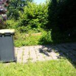 Anlegen von Rasen, Wiese, Hunde-Waschplatz